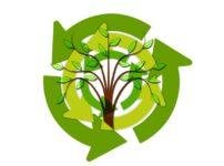 Tree Leaves Arrows Sustainability  - geralt / Pixabay